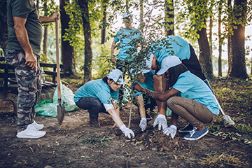 Volunteers planting tree