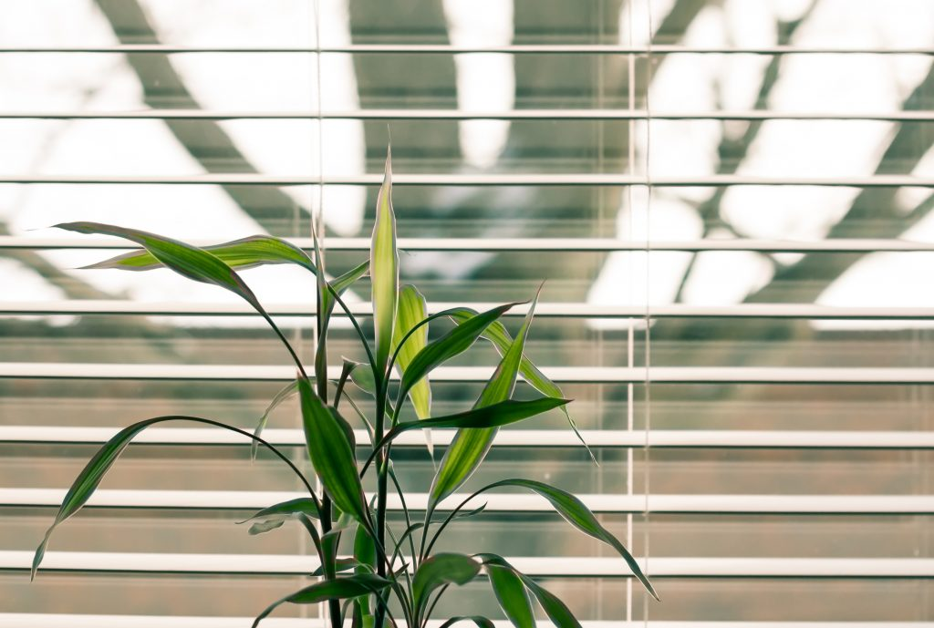 Blinds help businesses be more energy efficient