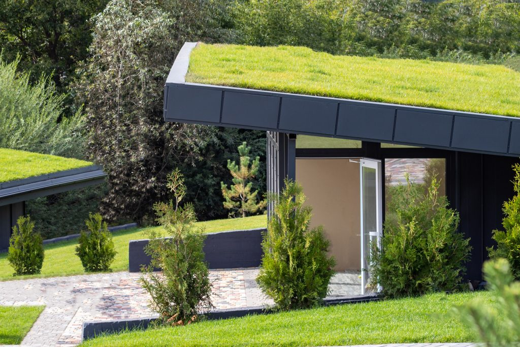 Green roofs help buildings be more energy efficient